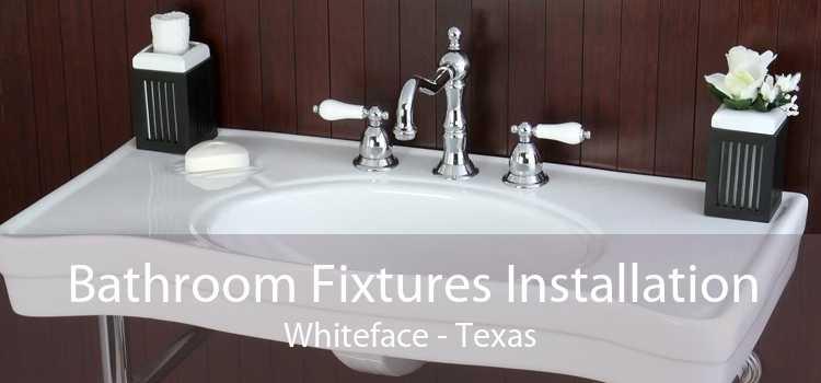 Bathroom Fixtures Installation Whiteface - Texas