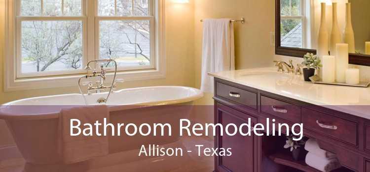 Bathroom Remodeling Allison - Texas