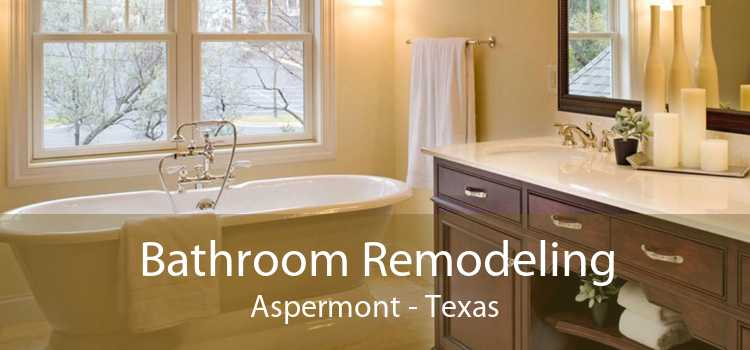 Bathroom Remodeling Aspermont - Texas