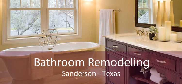 Bathroom Remodeling Sanderson - Texas