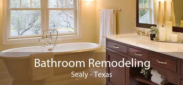Bathroom Remodeling Sealy - Texas