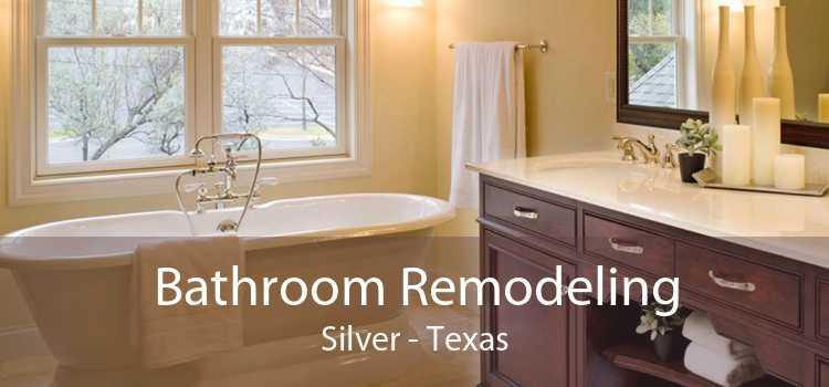 Bathroom Remodeling Silver - Texas