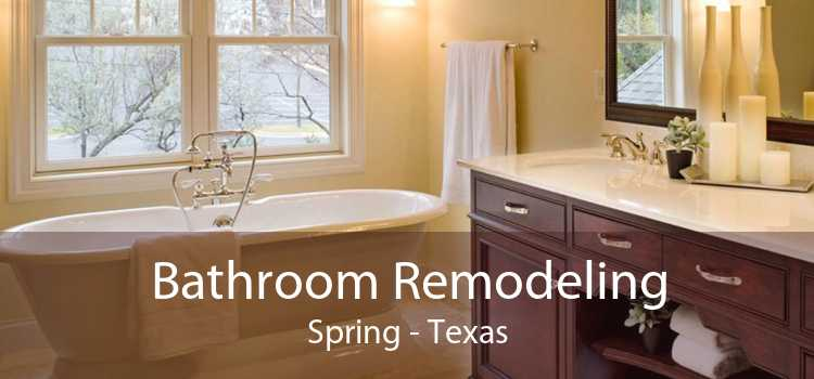 Bathroom Remodeling Spring - Texas