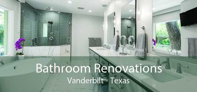 Bathroom Renovations Vanderbilt - Texas