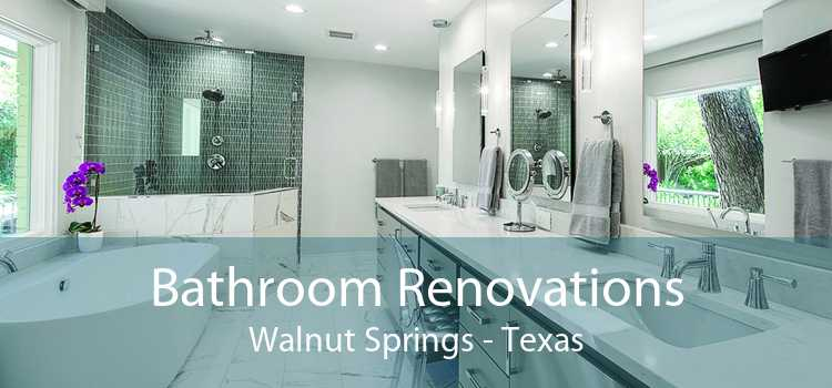 Bathroom Renovations Walnut Springs - Texas