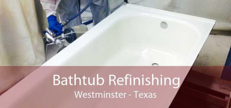 Bathtub Refinishing Westminster - Texas