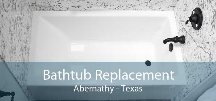 Bathtub Replacement Abernathy - Texas