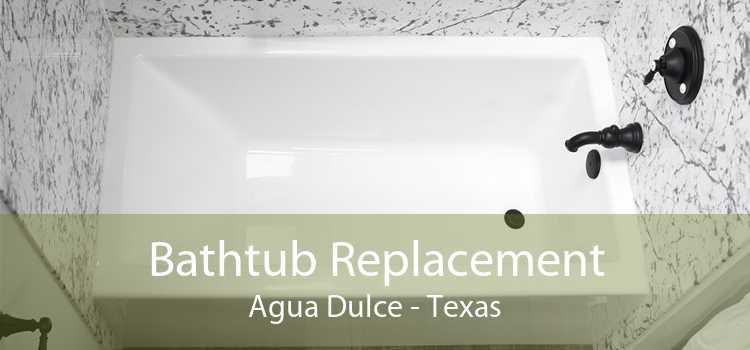 Bathtub Replacement Agua Dulce - Texas