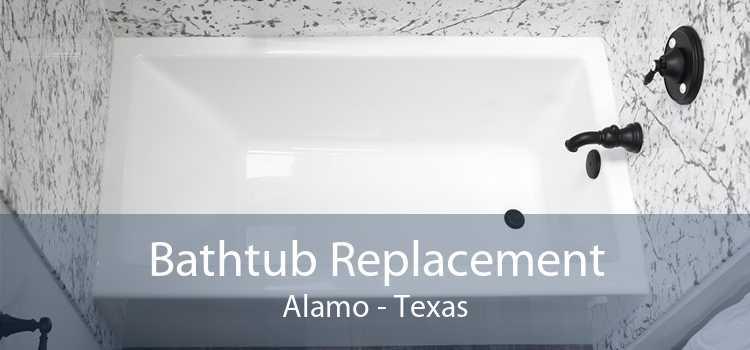 Bathtub Replacement Alamo - Texas