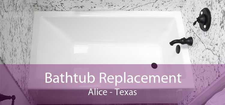 Bathtub Replacement Alice - Texas