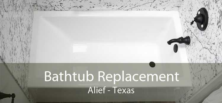 Bathtub Replacement Alief - Texas