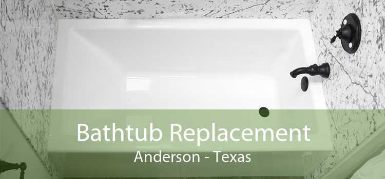 Bathtub Replacement Anderson - Texas