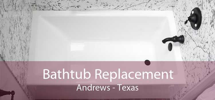 Bathtub Replacement Andrews - Texas