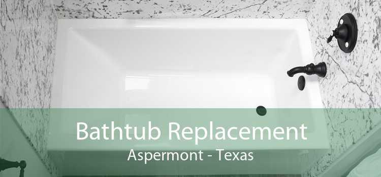 Bathtub Replacement Aspermont - Texas