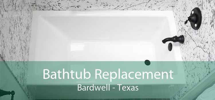 Bathtub Replacement Bardwell - Texas