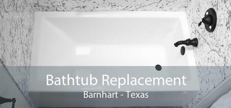 Bathtub Replacement Barnhart - Texas
