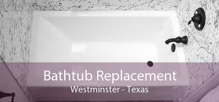 Bathtub Replacement Westminster - Texas