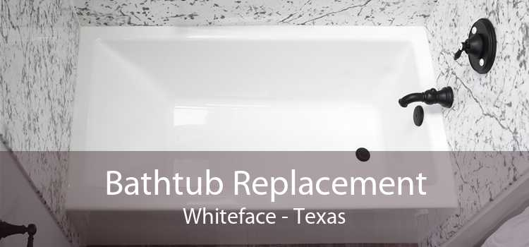 Bathtub Replacement Whiteface - Texas