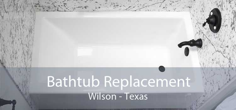 Bathtub Replacement Wilson - Texas