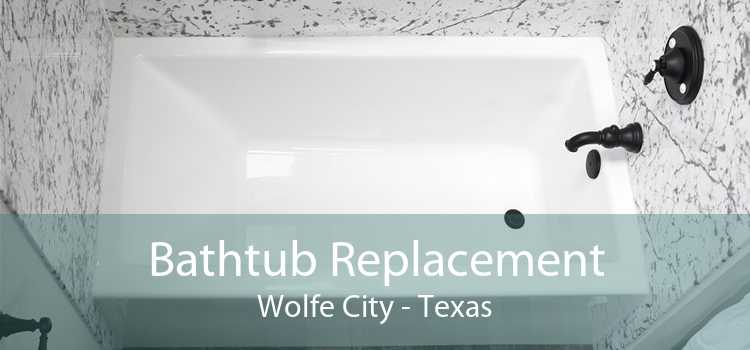 Bathtub Replacement Wolfe City - Texas